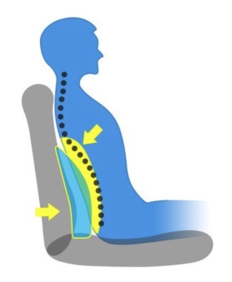 Where Should My Lumbar Support Be: spine position